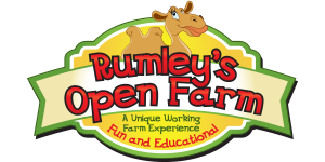 rumleys logo wwd